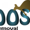 Roos Junk Removal profile image