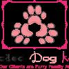Spoiled Dog Kare profile image
