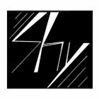 Dj Shy logo
