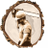 A G D J BROWN FORESTRY CONTRACTORS profile image