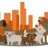 La Brea Dog Walking profile image
