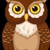 Twilight Construction Inc. profile image