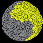 Left Brain Studios logo