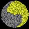 Left Brain Studios profile image