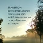 Transition Counselling logo