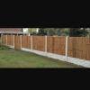 Boundary fencing profile image