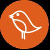 SQSP Design profile image