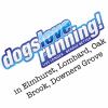 Dogs Love Running! of Elmhurst profile image