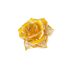 Gold Rose Cleaning LLC profile image