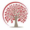 CIMAS Tax & Accounting profile image