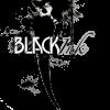 Black Ink Video profile image