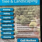 All counties tree and landscapes logo