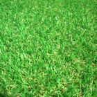 EaziLawn Synthetic Grass  logo