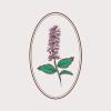 Prairie River Gardens profile image