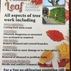 Autum leaf Tree and gardening services logo