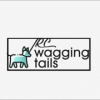 RCwaggingtails profile image