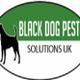 Black Dog Pest Solutions UK logo