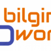 BILGINATWORK Ltd profile image
