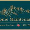 Alpine Maintenance Handyman Services profile image
