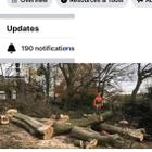 GM cutting trimming tree service logo