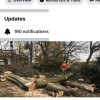 GM cutting trimming tree service profile image