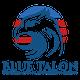 Blue Talon Investigation & Protection Group, LLC logo