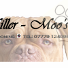 Miller - Moo's Dog Grooming profile image