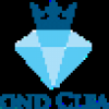 Diamond Cleaning Services profile image
