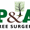 P&A Tree Surgery profile image