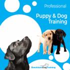 Breckland Dog Training Limited logo