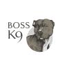 Boss K9 profile image