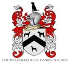 Nikkis Canine Capers BCCSDip.AdvCanBhv logo