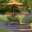 Potstore Garden Services profile image