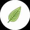 Ovate profile image