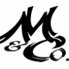 The Mischel & Co Group Pty Ltd profile image