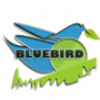 Bluebird Limo inc profile image