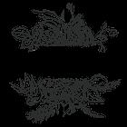 The Styled Stem logo