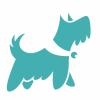 Pippin Pets Dog Training profile image