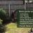 Bevan Garden Services profile image
