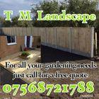 T M Landscape logo
