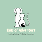 Tails of Adventure logo