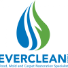 EverCleanPros profile image