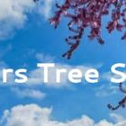 Fishers Tree Removal logo