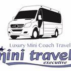 Mini Travel Executive logo