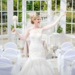 Dreams & Themes - Weddings and Events profile image.