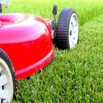 Toronto Grass Cutting & Lawn Care Services profile image.