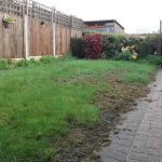 Aj garden maintenance and landscape services  profile image.