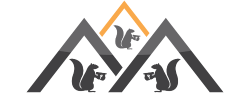 Three Bro Squirrels Roofing Ltd. profile image.