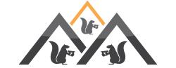 Three Bro Squirrels Roofing Ltd. profile image
