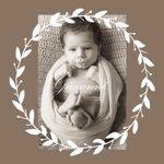 Mary J. D'Urso Photography profile image.